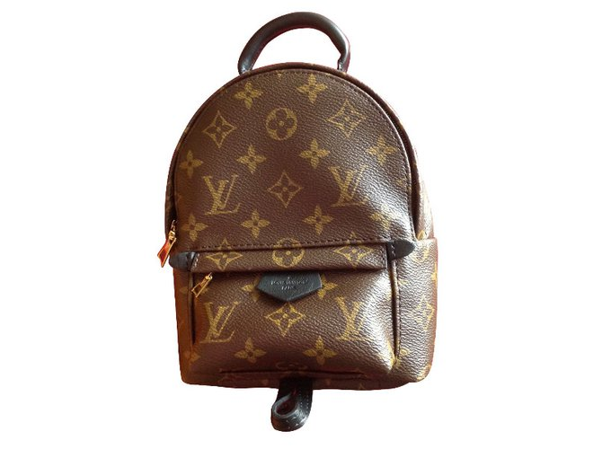 d303348ee262 Louis Vuitton Louis Vuitton Palm Springs mini Backpacks Leather Brown  ref.29723