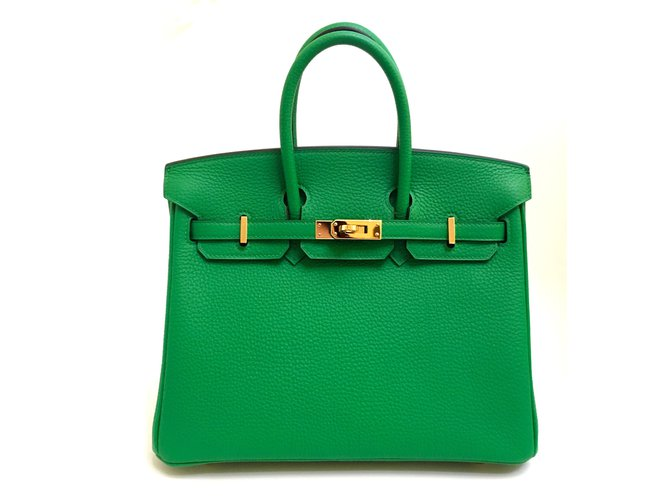 b3d92a8b0304 Hermès Hermes Birkin 25cm Bamboo Togo Leather Gold Hardware Handbags Leather  Green ref.38061