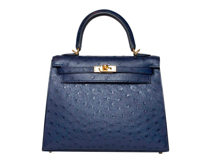 Sacs à main Hermès Kelly 25 Cuirs exotiques Bleu ref.63342
