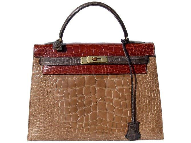 Sacs à main Hermès Sac à main Hermès Vintage Kelly Sellier Tricolor Alligator Ghw 32 cm Cuirs exotiques Multicolore ref.65017