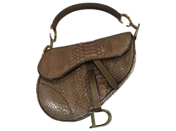Christian Dior Dior Snakeskin  saddlebag Handbags Other Other ref.121185