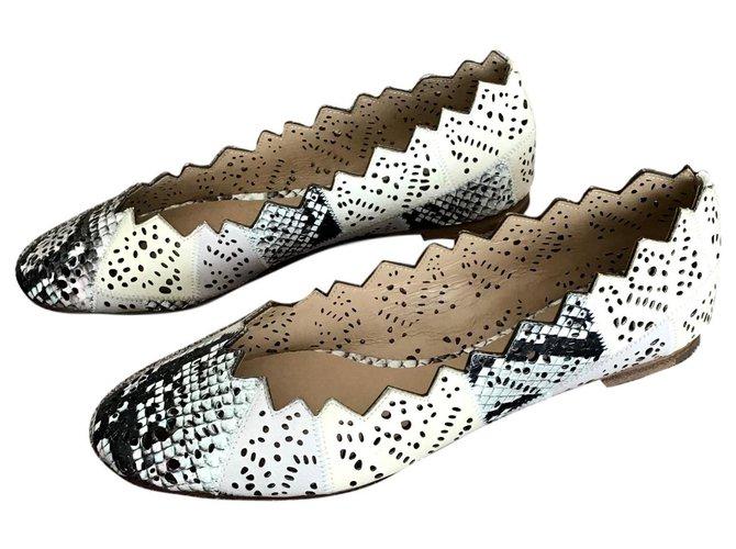 Chloé Ballet flats Ballet flats Leather Beige ref.147405