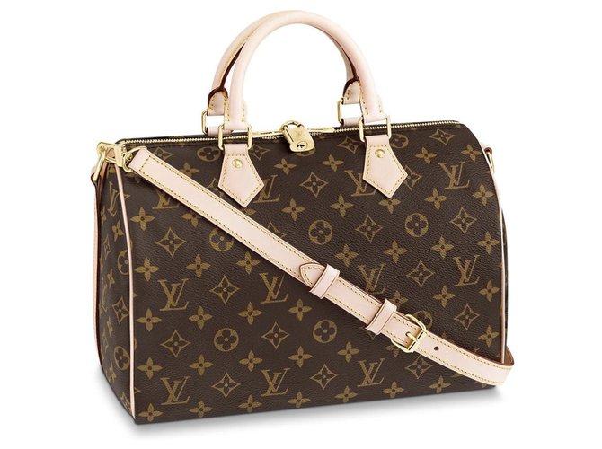 Louis Vuitton Speedy LV Handbags Other Brown ref.184469