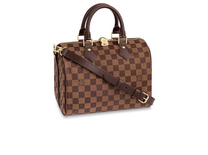 Louis Vuitton LV speedy 25 Band Handbags Other Brown ref.192266