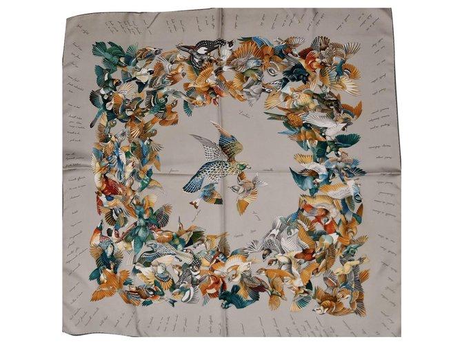 Hermès L 'Intrus Silk scarves Silk Multiple colors ref.266940