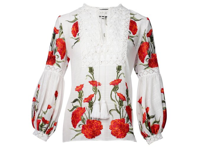 Alexis Rose Embroidered Tunic Multiple colors Cotton  ref.324166