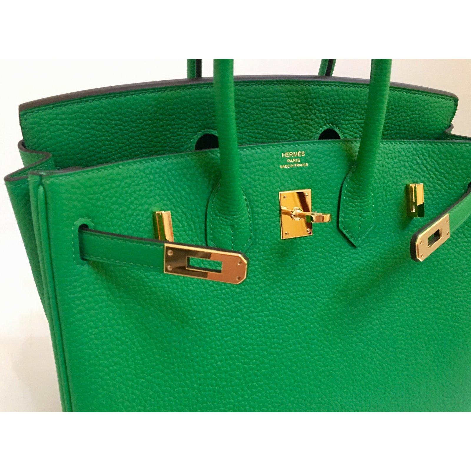 1ec4cb9317c Hermès Hermes Birkin 25cm Bamboo Togo Leather Gold Hardware Handbags  Leather Green ref.38061 - Joli Closet