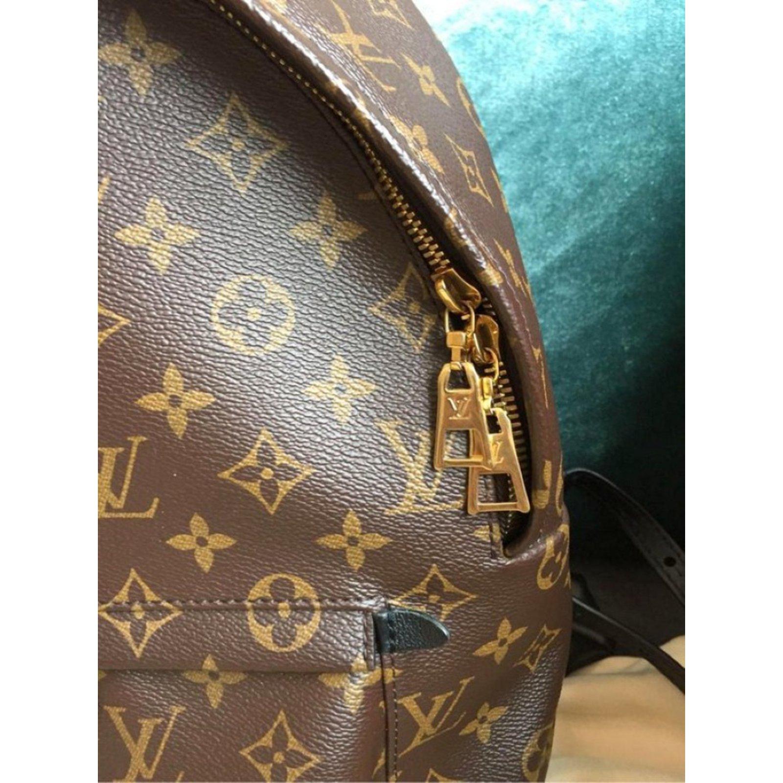 Sacs à dos Louis Vuitton Sacs à dos Palm springs Autre Marron ref.59821 -  Joli Closet 95552a41014