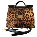Sicily leopard - Dolce & Gabbana
