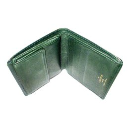 Louis Vuitton-Wallets Small accessories-Green