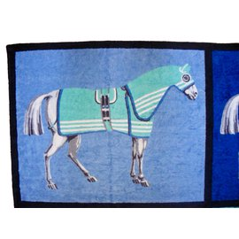 Hermès-HERMÈS : RARE TWIN DRAP ou TAPIS de PLAGE-Multicolore