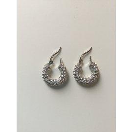 Céline-Earrings-Silvery