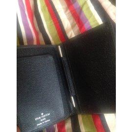 Louis Vuitton-porte carte taiga gris-Gris