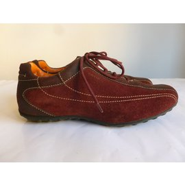 Geox-suede sneakers-Other