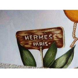 Hermès-Foulards-Multicolore,Beige