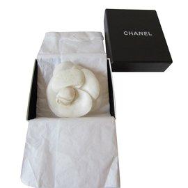 Chanel-Camélia-Crème