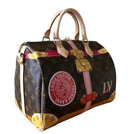 Louis Vuitton-Speedy Shoulder Strap 30-Multiple colors