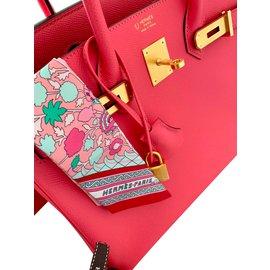 Hermès-Special order Birkin 30 - Horseshoe-Pink