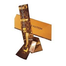 d3dfdf5fec50 Accessoires luxe Louis Vuitton occasion - Joli Closet