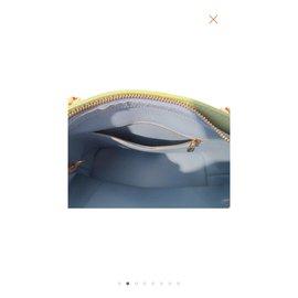 Louis Vuitton-Houston valeur 1100 EUR-Vert clair