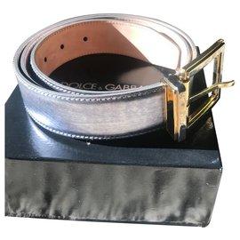 Dolce & Gabbana-BELT VERIS DOLCE GABBANA GRAY-Dark grey