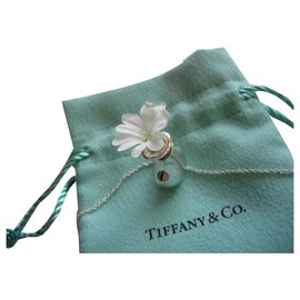 Tiffany & Co-Bottle opened by Elsa Peretti for Tiffany & Co.-Silvery
