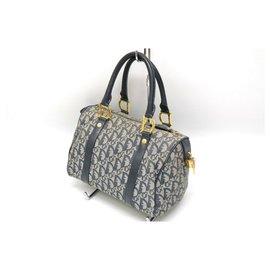 Dior-Dior Trotter Hand Bag-Blue