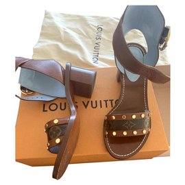 Louis Vuitton-passenger-Marron