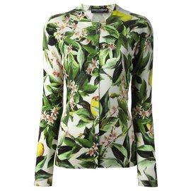Dolce & Gabbana-Tricots-Multicolore