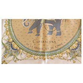 Hermès-Carapaçons aus Frankreich und Indien-Mehrfarben