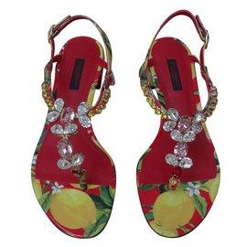 Dolce & Gabbana-Sandales-Multicolore