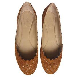 Chloé-Lauren Ballet Flats-Caramel