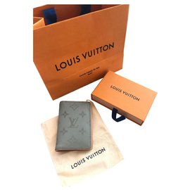 Louis Vuitton-Louis Vuitton pocket organiser-Grey