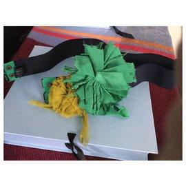 Lanvin-POMPON AND ELASTIC BELT-Green