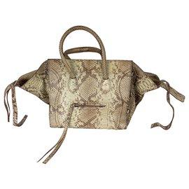 Céline-Luggage Phantom-Beige