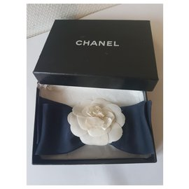 Chanel-Pins & brooches-Eggshell,Navy blue