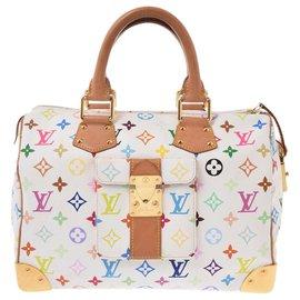 Louis Vuitton-Louis Vuitton multicolore Speedy 30 Bron-Marron