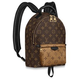 Louis Vuitton-LV Palm Springs PM new-Brown
