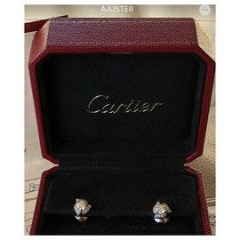 Cartier-Fleur-Blanc