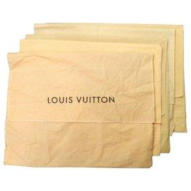 Louis Vuitton-Louis Vuitton Envelope Dust Cover Bag-Other