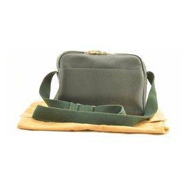 Louis Vuitton-Louis Vuitton Taiga Reporter Epicea-Green
