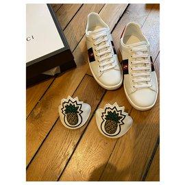 Gucci-Basket Gucci neuves-Blanc