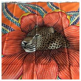 Hermès-baobab cat-Orange