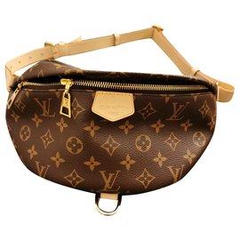 Louis Vuitton-LV bumbag-Brown