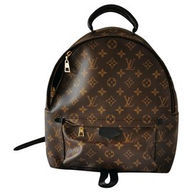 Louis Vuitton-Palm springs mm-Brown