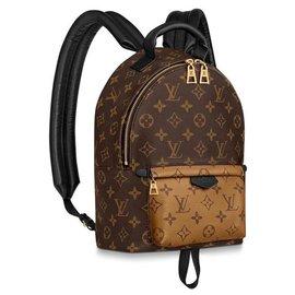 Louis Vuitton-Backpacks-Multiple colors