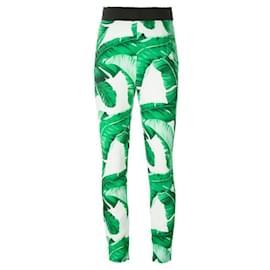 Dolce & Gabbana-Pants, leggings-Multiple colors