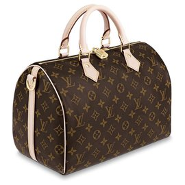Louis Vuitton-LV rapide-Marron