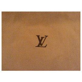 Louis Vuitton-Pochettes-Autre