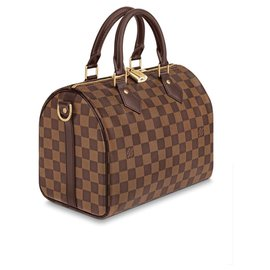 Louis Vuitton-LV speedy 25 Band-Brown